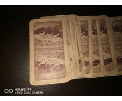 Kártya!  Piantik Nándor és Fiai!