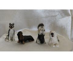Kutyák -kutyusok 4 db Husky-Tacskó-Si-Cu - Óangol juhászkutya